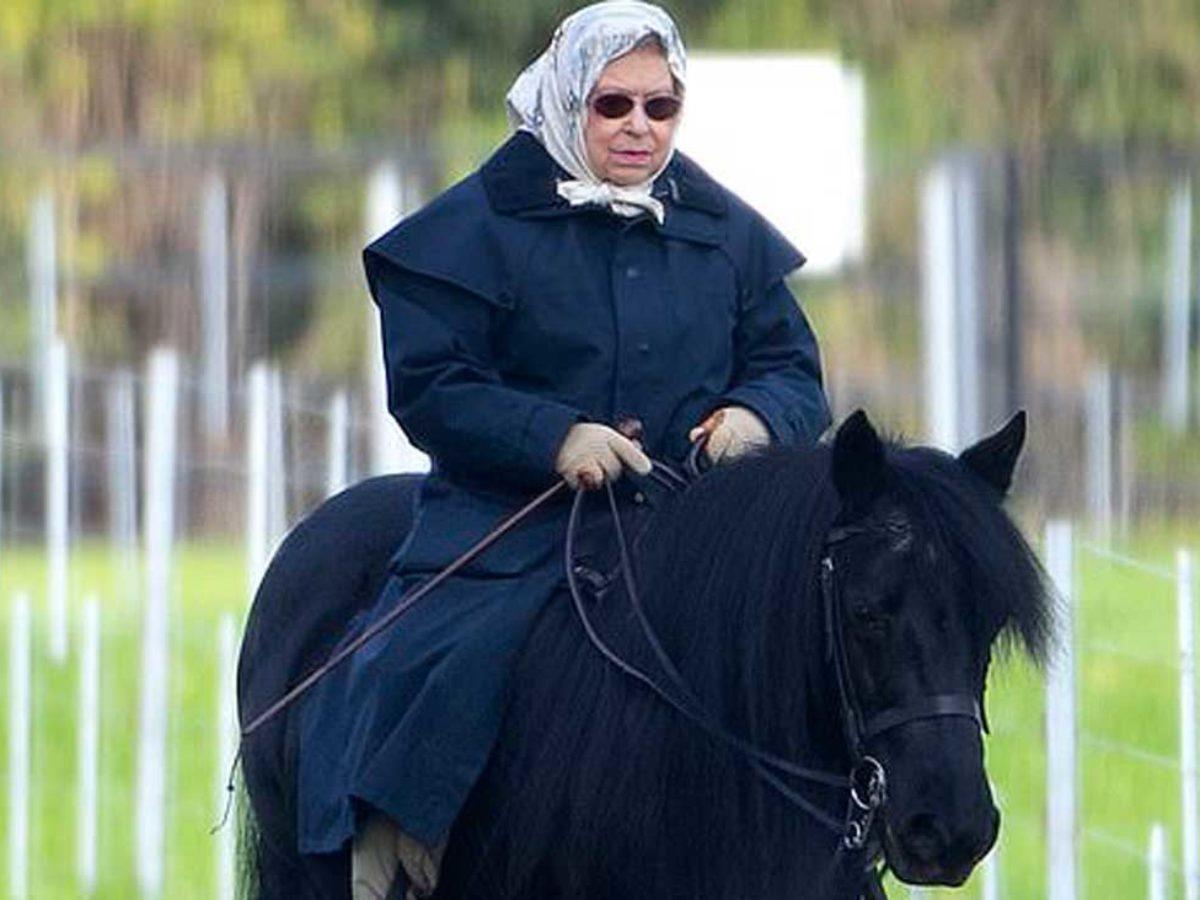 Balade à cheval pour la reine Elizabeth lors du congé de l'Armistice